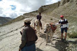 Mustang Lo Manthang